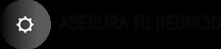 Icono con T.5